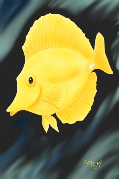 Yellow Tang | shadowmare72 | Digital Drawing | PENUP