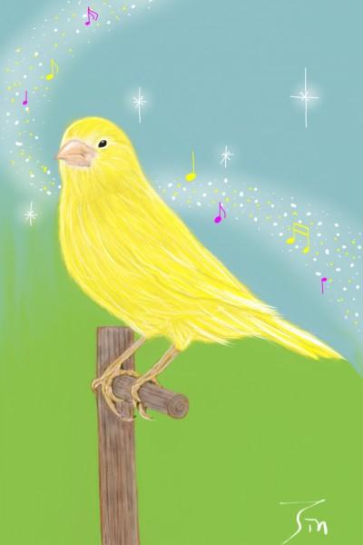 YELLOW  카나리아  canary  아름다운 소리를 들어보셨나요~? | jinhee | Digital Drawing | PENUP