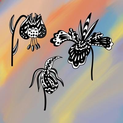 Coloring Digital Drawing | stedf | PENUP