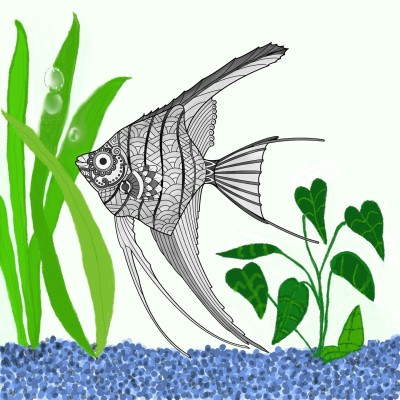 Freshwater Angelfish  | Trish | Digital Drawing | PENUP