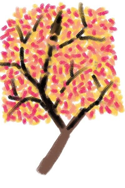 단풍나무   KimHo   Digital Drawing   PENUP