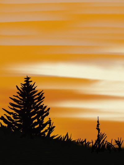 Wonderful sunset | AntoineKhanji | Digital Drawing | PENUP