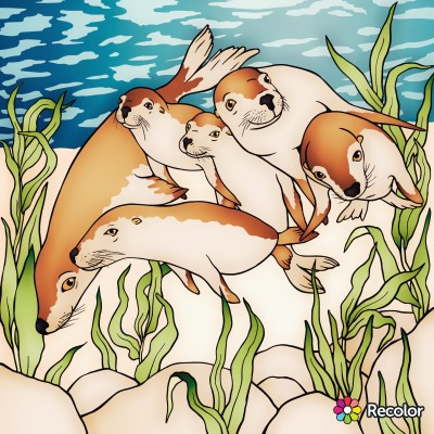 Animal Digital Drawing | con | PENUP