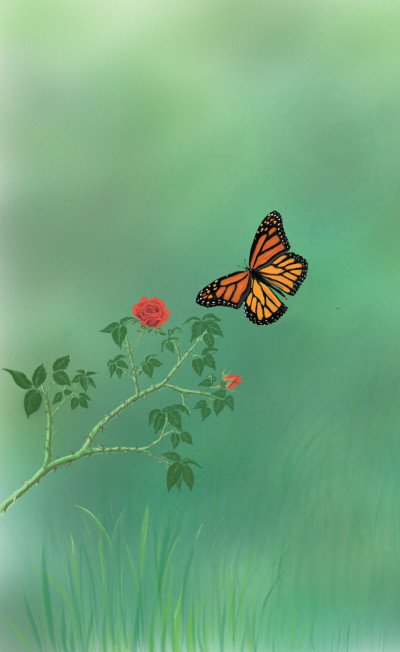 Butterfly & Red rose  | abdulrahman | Digital Drawing | PENUP