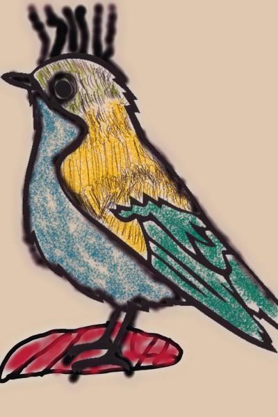 Ohio state bird, the Dougie  | jimmyvee | Digital Drawing | PENUP