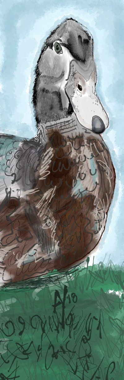 Mr Mule the Drake   AHY   Digital Drawing   PENUP