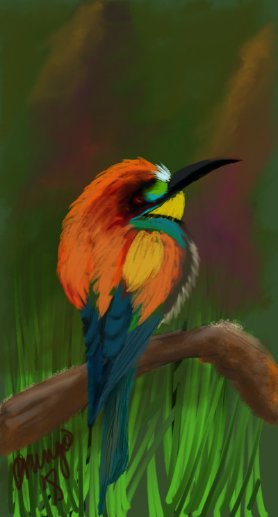Bird challenge 2 | Cmingo417 | Digital Drawing | PENUP