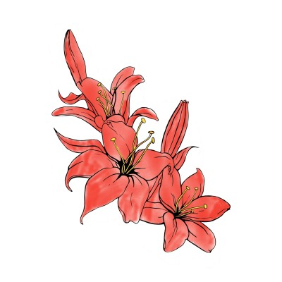 The Mexican Flowers | avictorias13 | Digital Drawing | PENUP