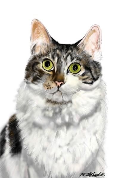 Friend's kitty | mburdick | Digital Drawing | PENUP