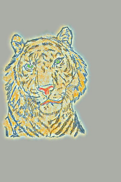 Tigre | richard | Digital Drawing | PENUP