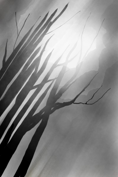 Forest after rain | aiR | Digital Drawing | PENUP