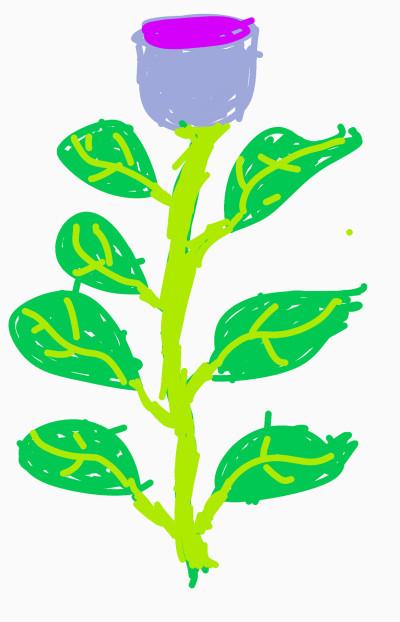 Rose color | Sirianan | Digital Drawing | PENUP