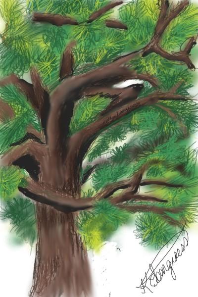 Tree- | _Katlyn_L | Digital Drawing | PENUP