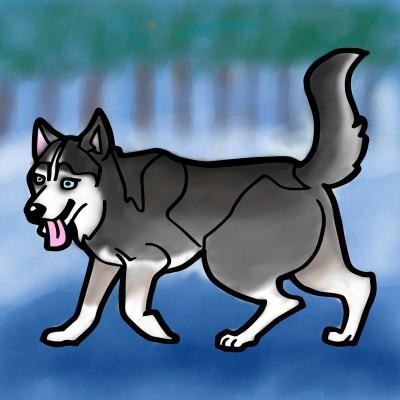 Husky   lisa   Digital Drawing   PENUP