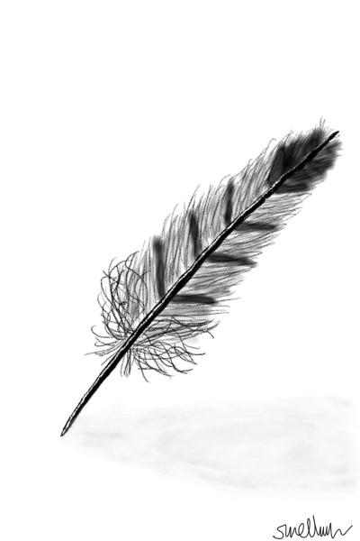 feather | GoodForLife | Digital Drawing | PENUP