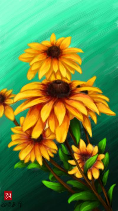 원추천인국(Rudbeckia bicolor)   sun.u   Digital Drawing   PENUP