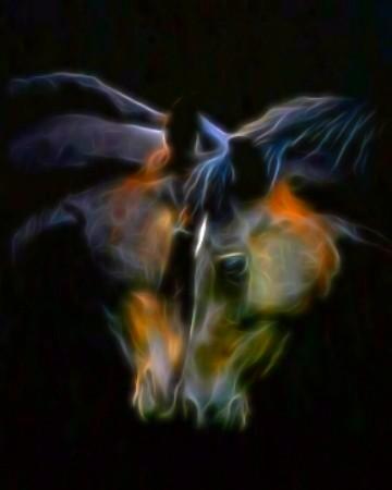 Animal Digital Drawing | zippy51 | PENUP
