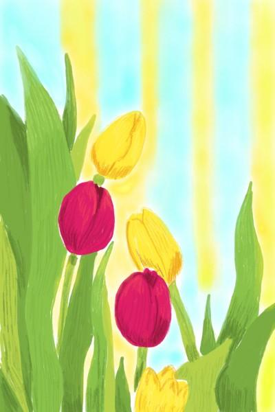 Tulipanes  | Ivonne | Digital Drawing | PENUP