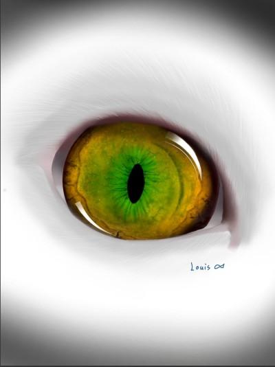 my cat's eye | Louis | Digital Drawing | PENUP