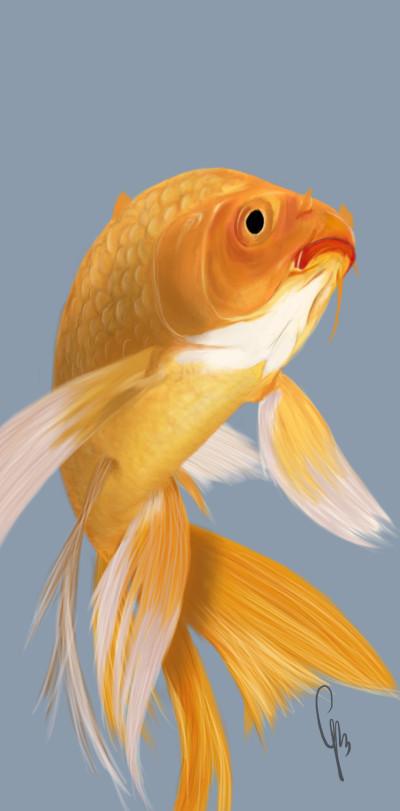 Goldfish | Grace | Digital Drawing | PENUP