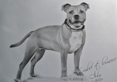 dog | artgraphit | Digital Drawing | PENUP