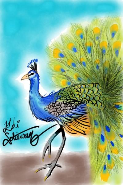 beautifull bird | Edboners | Digital Drawing | PENUP
