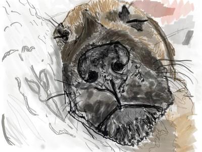 Sleeping Puppy, Greta   AHY   Digital Drawing   PENUP