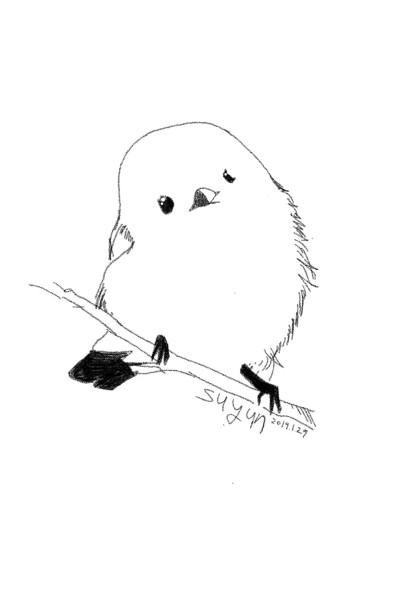 Mackerel | suyun | Digital Drawing | PENUP