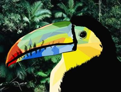 Toucan -Google Drawings | ImpulsivePhotos | Digital Drawing | PENUP