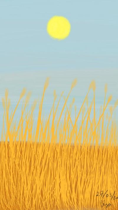 Field  | lisa2706 | Digital Drawing | PENUP