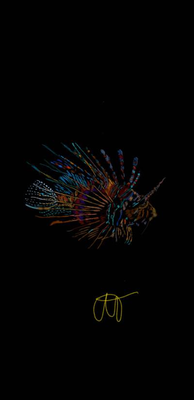 fish   Tek   Digital Drawing   PENUP