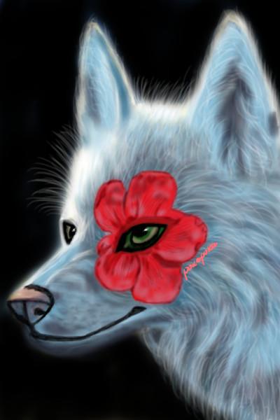 My wolf. My love    pokapoka   Digital Drawing   PENUP