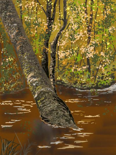 The Amazon River | AntoineKhanji | Digital Drawing | PENUP