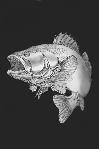 Fish | oroll | Digital Drawing | PENUP