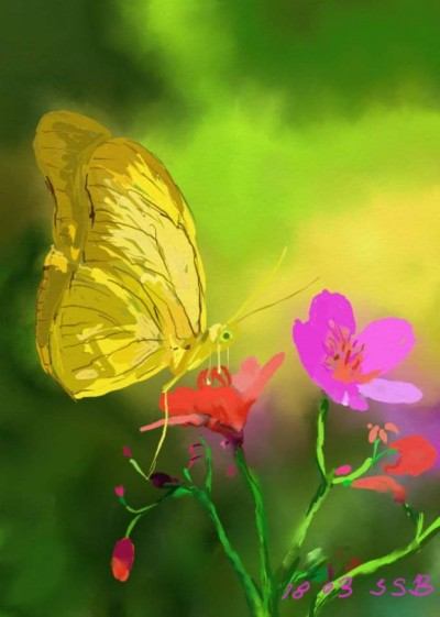 Dream of butterfly  | SSB | Digital Drawing | PENUP