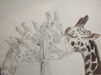 In progress...   zivzif   Digital Drawing   PENUP