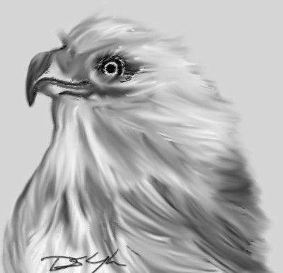 eagle | Bluzie | Digital Drawing | PENUP