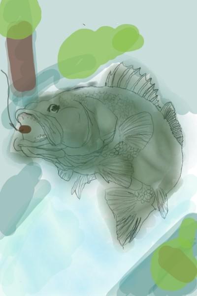 Fish | hazelkr | Digital Drawing | PENUP