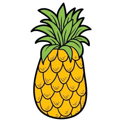 A Pineapple | Shobha | Digital Drawing | PENUP