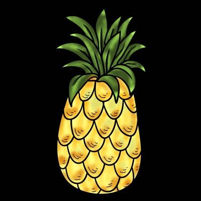 Pineapple  | jemini76 | Digital Drawing | PENUP