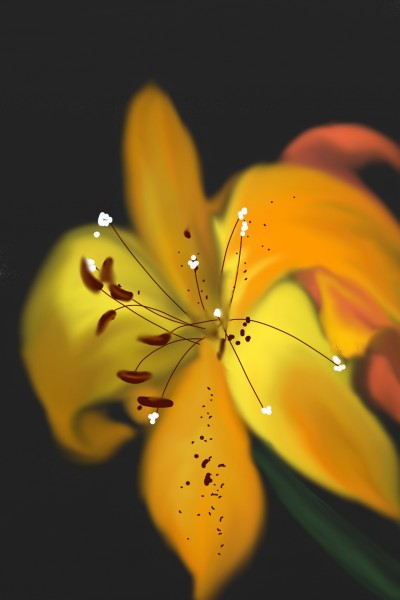 FLOWER | val | Digital Drawing | PENUP
