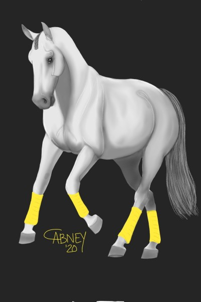 Yellow Polo Wraps   shadowmare72   Digital Drawing   PENUP