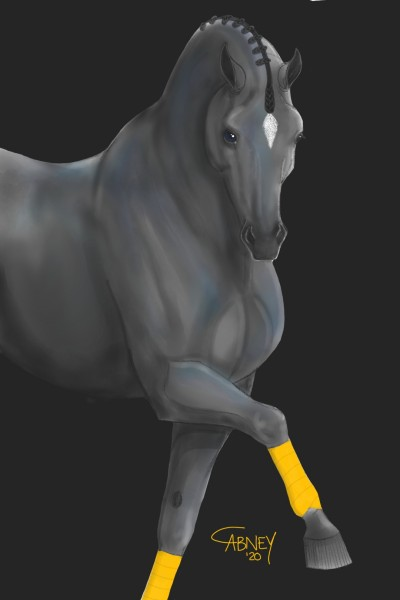 Yellow Polo Wraps II | shadowmare72 | Digital Drawing | PENUP