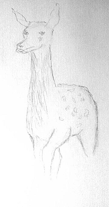 Animal Digital Drawing | Blueflow | PENUP