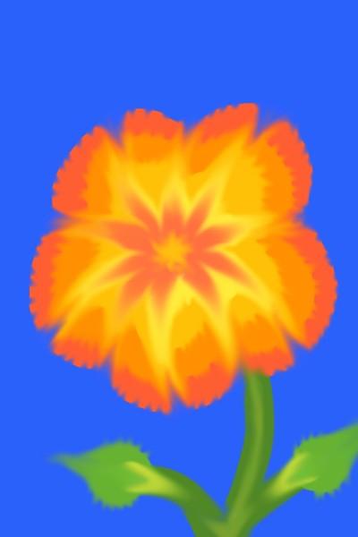 Flower challenge @Barbra  | Marigold | Digital Drawing | PENUP