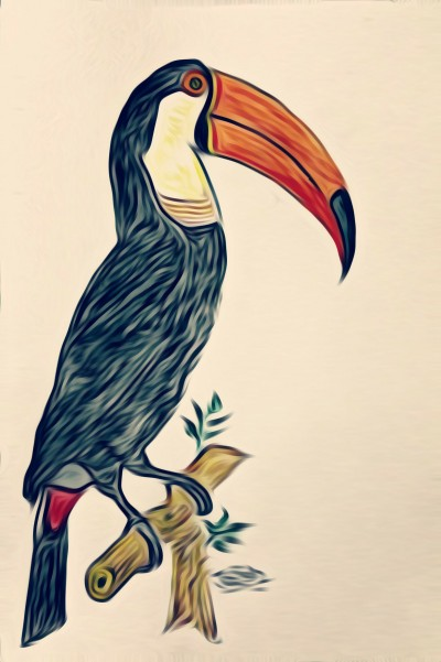 BEAUTIFUL BIRDS  | krish | Digital Drawing | PENUP