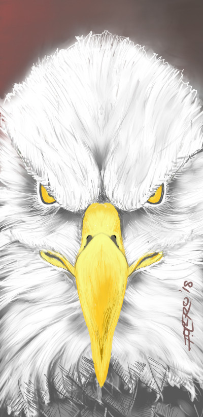 Fly Eagles Fly   ivanski215   Digital Drawing   PENUP