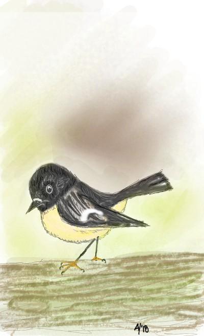 Little Bird   AHY   Digital Drawing   PENUP
