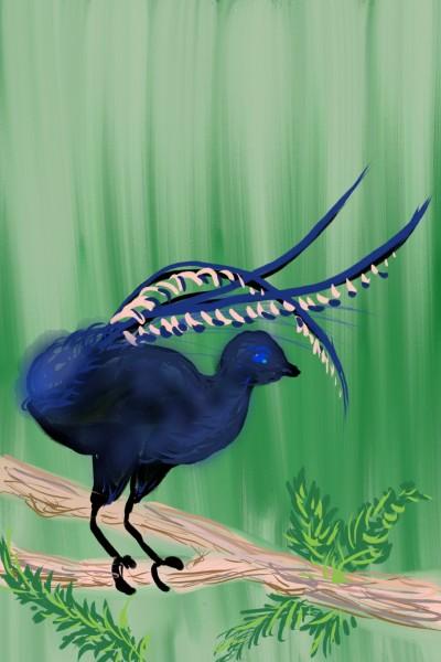 lyrebird | Damirijana | Digital Drawing | PENUP