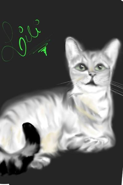 Lili   val   Digital Drawing   PENUP